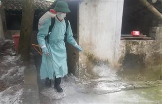 Chăn nuôi an toàn sinh học - vũ khí chống dịch tả lợn châu Phi