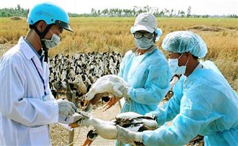 Ngành nông nghiệp cần nêu cao tinh thần chống dịch H5N1