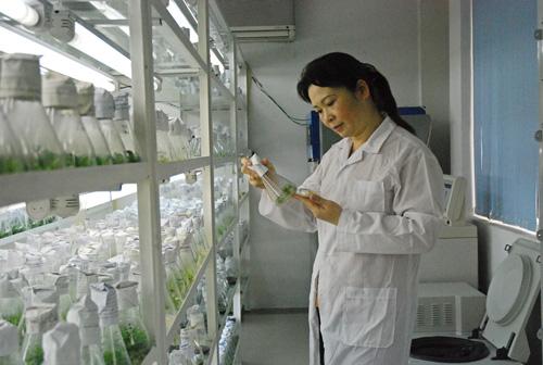 Đầu tư cho khoa học nông nghiệp