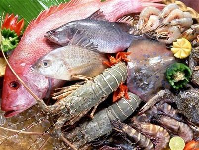 Nhận diện hải sản có độc tố chết người